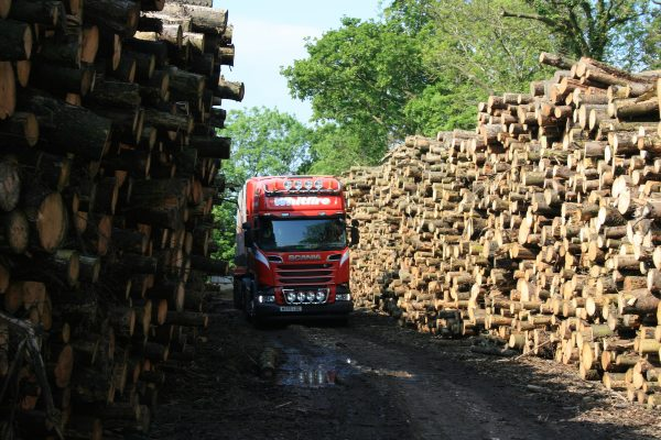 collect logs awaiting processing at woodyard